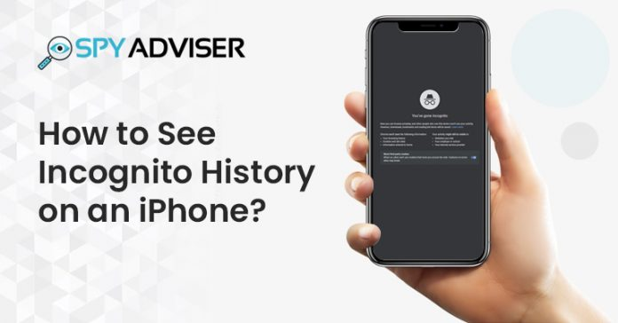 See-Incognito-History-on-an-iPhone